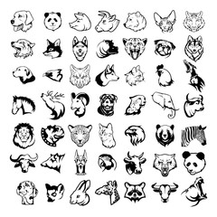 animals logo, dangerous carnivores, various animals for your logo, set of different domestic and wild forest animals, animals head, flat design, vector graphics to design