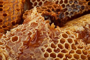 Honeycomb slice closeup background