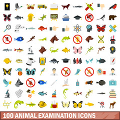 100 animal examination icons set in flat style for any design vector illustration