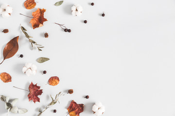 Autumn composition. Frame made of eucalyptus branches, cotton flowers, dried leaves on pastel gray background. Autumn, fall concept. Flat lay, top view, copy space