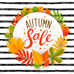 Autumn sale message with color leaves