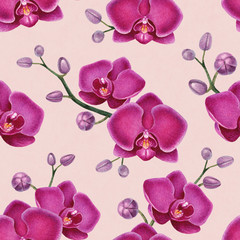 Watercolor illustrations of orchids. Seamless pattern