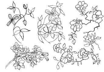 Creative flower graphic illustration. Textures made with black ink. Hand brush painting for your designs: logo, for posters, invitations, cards. Vector illustration.