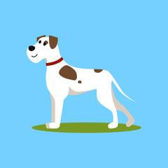 Cartoon Color Funny Puppy on Green Grass . Vector