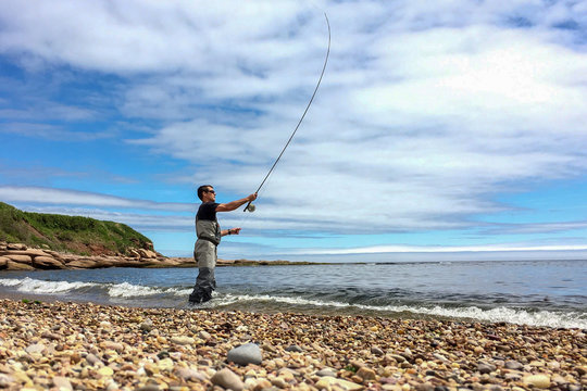 Saltwater fly fishing for Striped bass on Quebec's Gaspe Peninsula, Canada