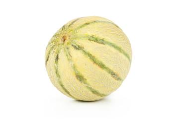 One whole striped fresh melon cantaloupe variety isolated on white background