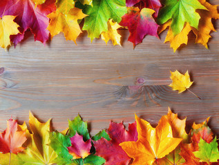Autumn background. Maple varicolored autumn leaves on the wooden background