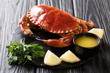 Served boiled delicacy brown crab with sauce, lemon and parsley on a slate board close-up. Delicious food. horizontal