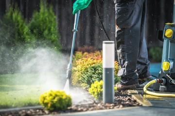 Backyard Garden Cleaning