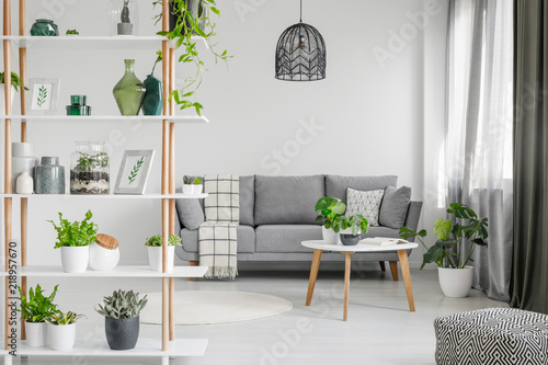 Real Photo Of A Wooden Rack With Plants And Decorations In Scandi