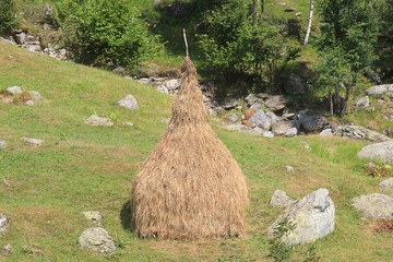 sheaf of straw in mountain