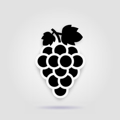 Grape icon food fuits on a gray background