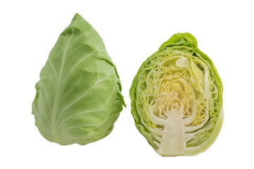 Fresh green cabbage sliced on white background