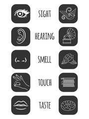 Five senses icons vector illustration. Feelings of person