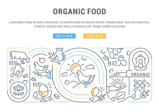 Linear Banner of Food Labels