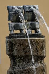 Wasserspeier am Max-Ernst-Brunnen vor dem Rathaus