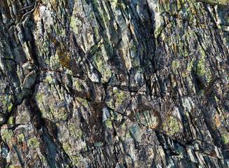 Stone texture with moss. Stone multi-layer with cracks and lichen on the surface.