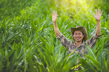 Happy farmer lift hands up in a corn field.