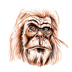 Bigfoot face cartoon illustration