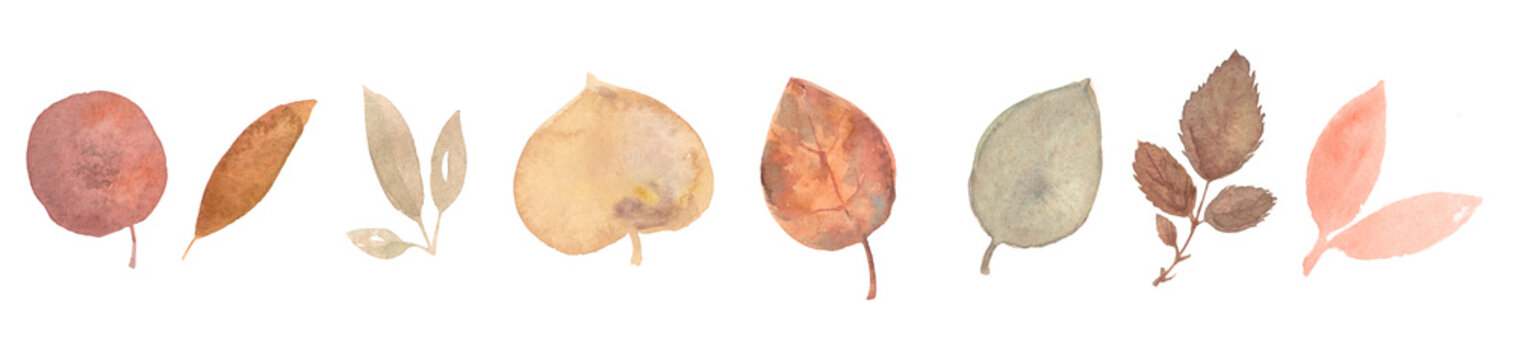 Set of autumn watercolor leaves isolated on white background.