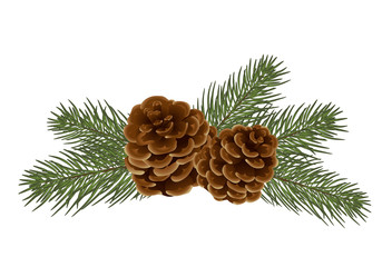 vector christmas tree branches. Realistic fir-tree and cones,  isolated. Great for christmas cards, banners, flyers, party posters, headers. Vector. Eps 10