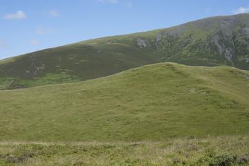 Grüne Hügel im Lake Dirstrict