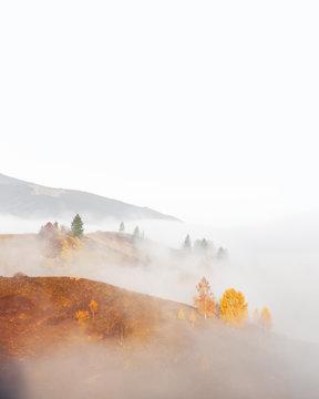 Amazing scene on autumn mountains. Yellow and orange trees in fantastic morning sunlight. Carpathians, Europe. Landscape photography