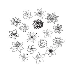 collection of botanical hand drawn doodles. meadow plants and flowers elements. pencil ink sketch of flowers and leaves. vector set of decorative elements.