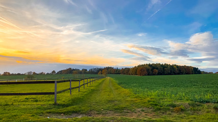 Summer landscape during the sunset with field, path, fence, meadow and forest behind