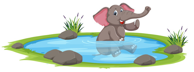 Happy elephant playing in the water