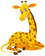 A cute giraffe on white background