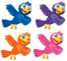 Set of colorful birds