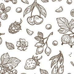 Berries sketch pattern vector seamless background