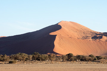 Red sand dunes in Namibia