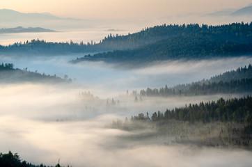 Poster Morning with fog Ukrainian fairy tale