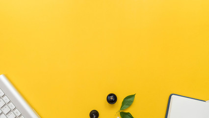 keyboard and lens with leaves on yellow background business concept
