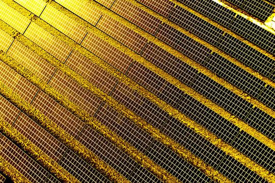 Photovoltaik-Anlage bei Sonnenuntergang, Luftaufnahme