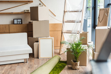 cardboard boxes, rolled carpet, green houseplant and furniture in new house during relocation
