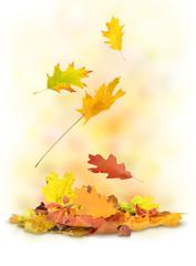 Herbst 188