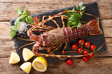 Raw spiny lobster with tomato, lemon and herbs close up on a black board. Horizontal top view