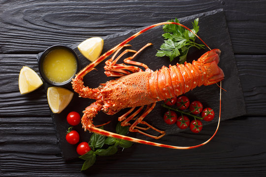 Expensive food: spiny boiled lobster with fresh tomato, lemon and melted butter close-up on black stone. Horizontal top view from above