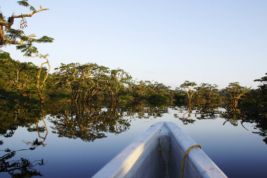 Boattrip on the amazonas of cuyabeno national park in ecuador