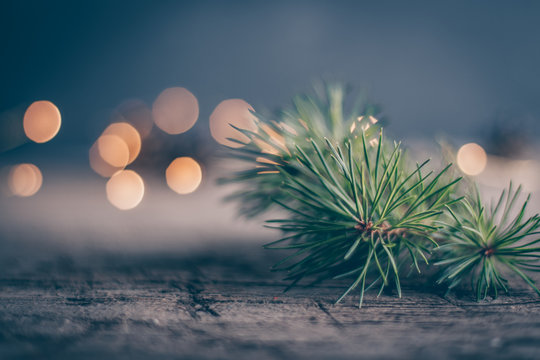 Christmas holiday concept withfir tree branch and magic bokeh. Copy space. Abstract Background