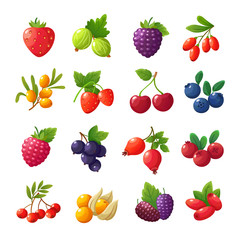 Cartoon berries. Strawberries, raspberries, cherries, gooseberries, blueberries, cranberries vector set isolated on white background
