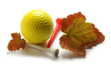 Golf                                                               ft81071279