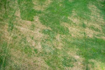 Luftaufnahme von einer vertrockneten Wiese in der Dürrezeit