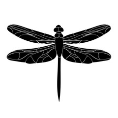 insect silhouette of dragonfly