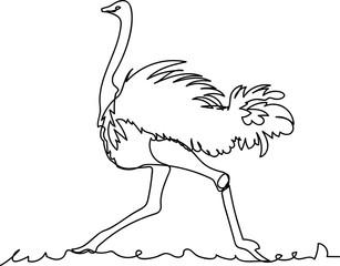 ostrich. Doodle. continuous sketch. one line
