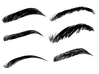 Detailed eyebrows set