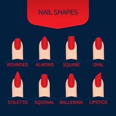 Set of nail shapes for professional manicureSet of nail shapes. Fingernails of different form with red nail polish on blue background. Professional manicure beauty concept. Vector illustration.